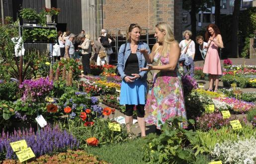 Amersfoort bloemenmarkt in de centrum bij Hotel de Tabaksplant