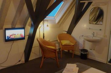 Basic room,shared bathroom/toilet, 2 pers. hotel de Tabaksplant Amersfoort